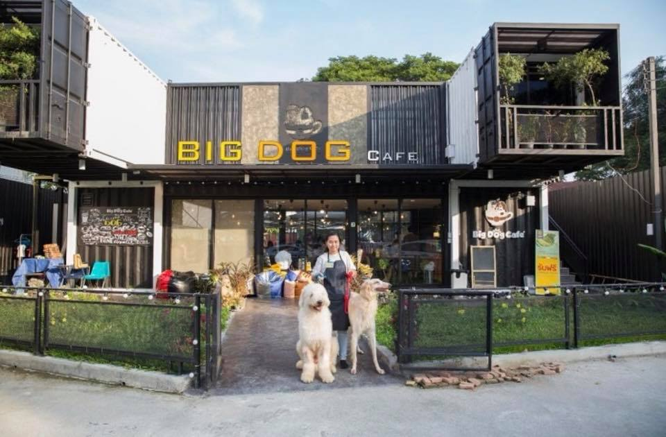 Big dog cafe 1